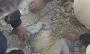 Bé gái Syria được kéo ra sống sót từ đống đổ nát