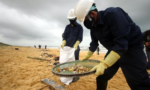 """Dầu vón cục dạt vào bờ biển Quảng Nam có """"dấu hiệu khác thường"""""""