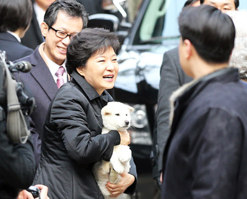 President Park Geun-hye holds a Jindo puppy before leaving her home in Samseong-dong, Seoul for her inauguration at the National Assembly on Feb. 25. She was presented with two Jindo puppies by her neighbors who said they will protect her in Cheong Wa Dae. The presidential office named them Saeromi and Heemangi, which collectively means new hope in Korean.