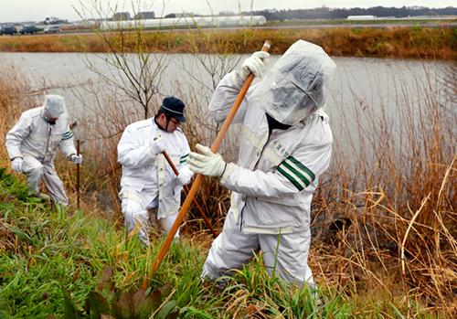 Các nhà điều tra tại hiện trường ở thành phố Abiko, tỉnh Chiba, nơi thi thể Linh được tìm thấy hơn 10 km về phía tây bắc.