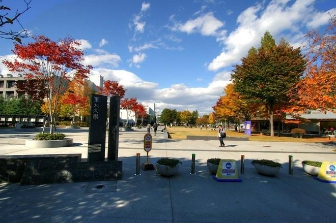 2. Đại học Tohoku  Tiền thân của Đại học Tohoku là Cao đẳng Dược thành lập năm 1736, tại Katahira, thành phố Sendai. Đây là trường hoàng gia thứ ba của Nhật Bản (sau Đại học Tokyo và Kyoto) và được biết đến là trường đầu tiên ở nước này chấp nhận sinh viên quốc tế. Hiện nay, trường có khoảng 10.000 sinh viên đại học, 4.000 sinh viên theo học thạc sĩ và 2.600 nghiên cứu sinh chương trình tiến sĩ. Ảnh: Printerest