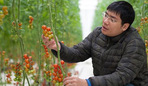 Anh Trần Thái Dương, doanh nhân khởi nghiệp và sản phẩm nông nghiệp được áp dụng công nghệ thân thiện với môi trường, hệ thống truy xuất nguồn gốc nông sản. Đây là một trong 18 doanh nghiệp nhận giải cuộc thi tổ chức lần đầu năm 2016.