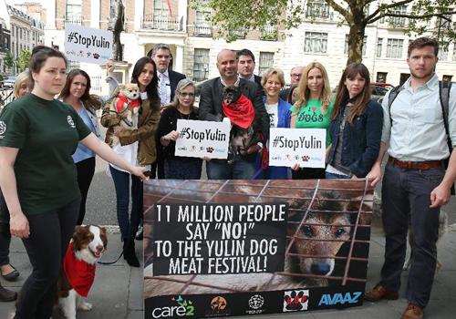 Trung Quốc cấm bán thịt chó tại lễ hội gây tranh cãi - ảnh 1