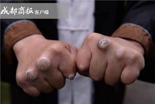 Chưởng môn phái Thanh Thành muốn thanh lọc võ lâm Trung Quốc - ảnh 3