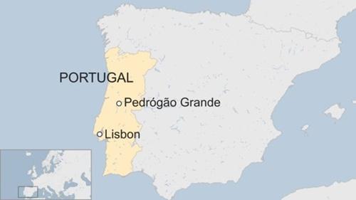 Thảm họa cháy rừng ở Bồ Đào Nha khiến 61 người thiệt mạng