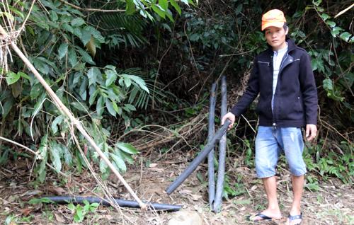 Voi rừng phá ống nước của dân - Ảnh minh hoạ 2