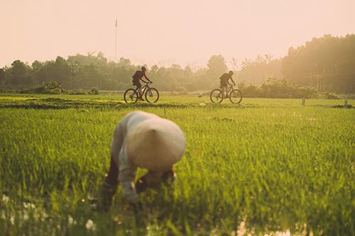 Người Mỹ đạp xe tìm xác máy bay của cha rơi trong chiến tranh Việt Nam - Ảnh minh hoạ 3