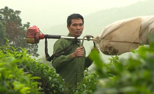 Nông dân sáng chế máy hút sâu cho cây chè
