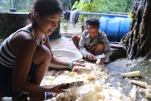 Bí quyết sinh tồn của người A Rem giữa rừng Phong Nha