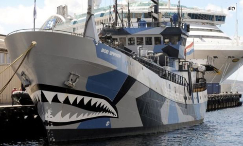 Bob Barker, một tàu của Sea Shepherd. Ảnh: AFP.