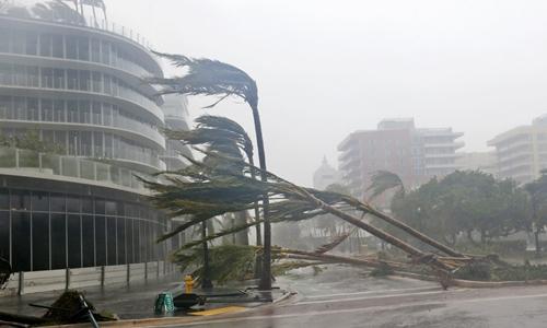 Bão Irma đổ bộ Florida với sức gió 210 km/h hôm 10/9. Ảnh: Business Insider.