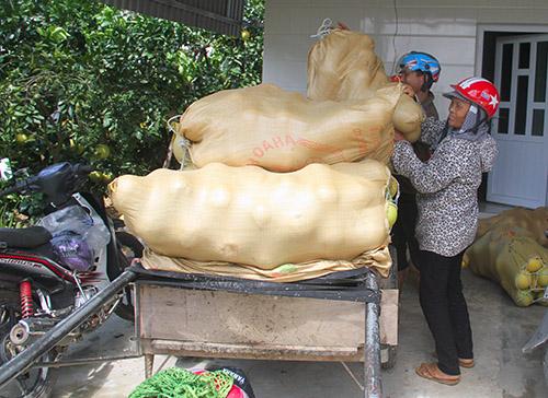 buoi-phuc-trach-rung-chat-dong-sau-bao-o-ha-tinh-2