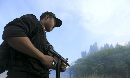 Đà Nẵng sẽ phong toả bán đảo Sơn Trà để phục vụ APEC
