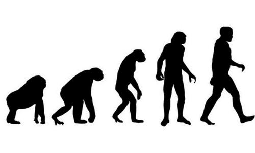 phan-biet-evolution-va-revolution