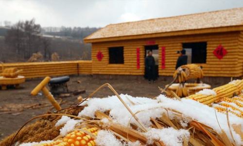 Nông trang bắp ngô đang trong quá trình xây dựng ở tỉnh Cát Lâm, Trung Quốc. Ảnh: CNS.