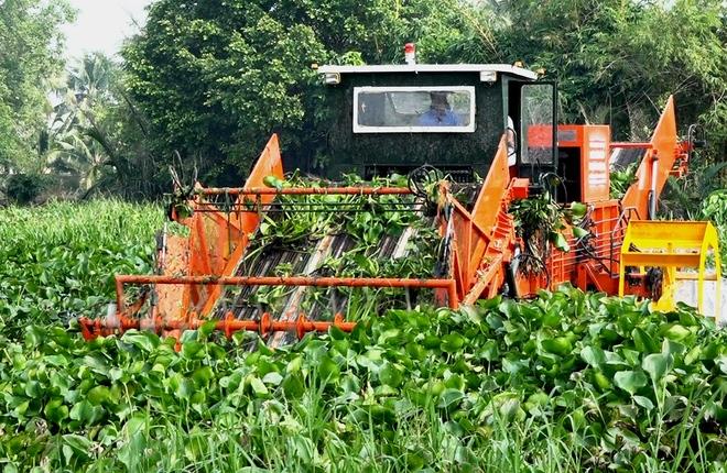 Máy cắt vớt lục bình hơn 3 tỷ đồng trên sông Sài Gòn