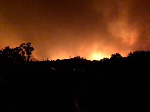 Đám cháy rừng sáng rực từ xa. Ảnh: Nhân vật cung cấp.