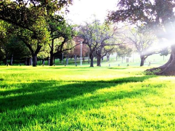 Adelaide dưới nắng mặt trời - 4