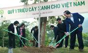 Cao Bằng được 'phủ xanh' thêm 80.000 cây