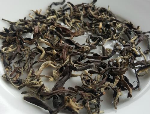 Loại trà đắt gấp 13 lần nhờ rầy xanh cắn lá