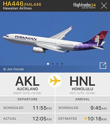 Thông tin khởi hành và hạ cánh của chuyến 446. Ảnh: FlightRadar24