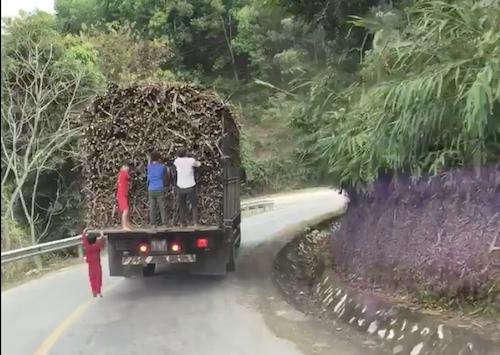 Đám trẻ em đang đánh đu trên đuôi xe tải. Ảnh: Cắt từ video.