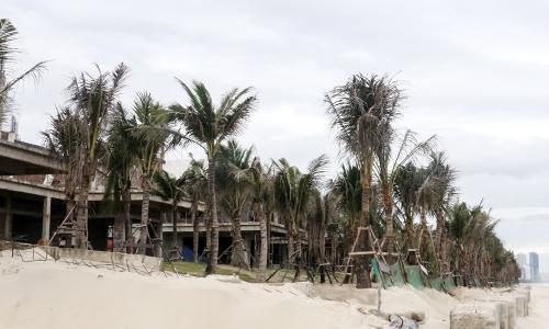 Dự án nghỉ dưỡng ven biển Đà Nẵng xây hàng chục biệt thự không phép