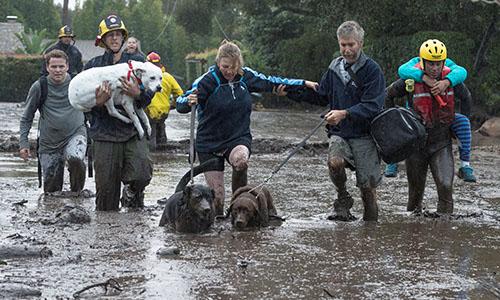 Lực lượng cứu hộ hỗ trợ người dân đi sơ tán. Ảnh: Reuters.