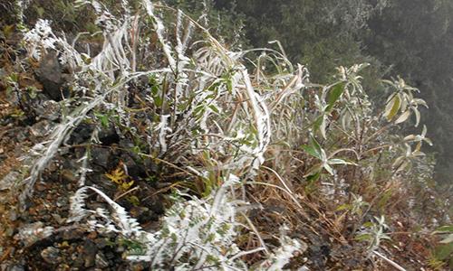 Vùng núi Lào Cai xuất hiện băng giá