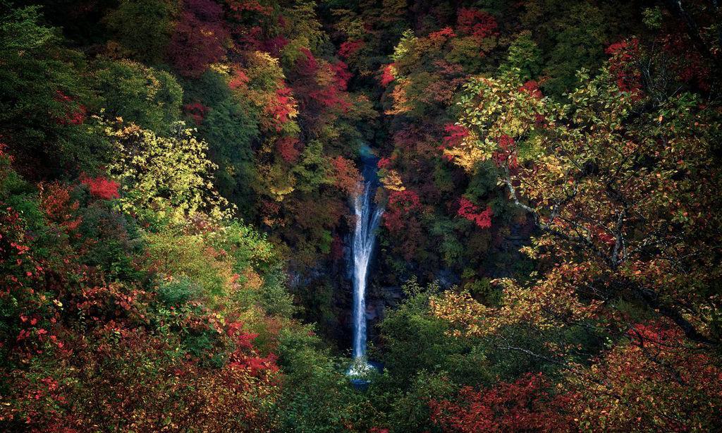 Bộ ảnh thiên nhiên đẹp nhất tháng 1