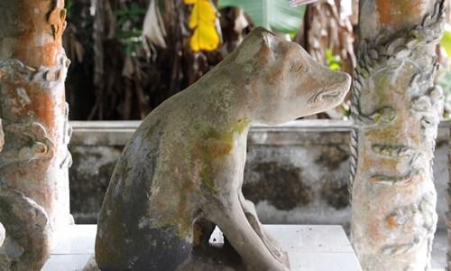 Ngôi làng ở Huế suy tôn chó là thần cẩu