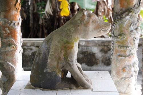 Ngôi làng ở Huế suy tôn chó là thần cẩu - ảnh 1