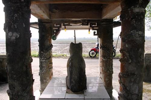 Ngôi làng ở Huế suy tôn chó là thần cẩu - ảnh 3
