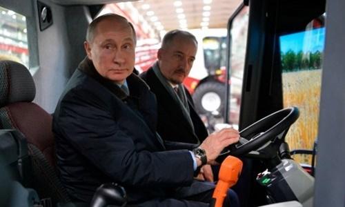 Putin đùa sẽ đi lái máy gặt nếu không tái đắc cử