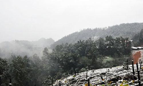 Nhiệt độ ở Sapa thấp nhất trong 2 năm qua