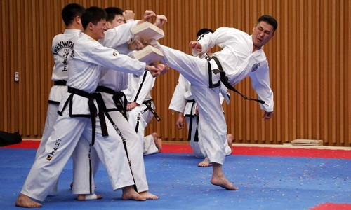 Vận động viên Hàn, Triều biểu diễn taekwondo chung tại Seoul