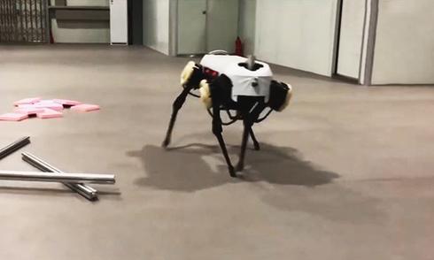 robot-4-chan-di-lai-nhu-ngua-cua-trung-quoc