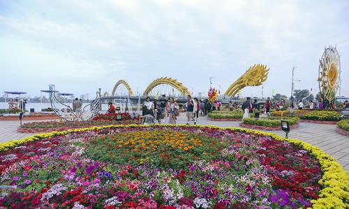 Bờ sông Hàn Đà Nẵng rực rỡ muôn sắc hoa