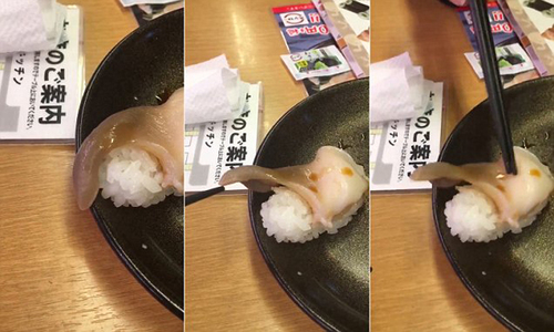 Thực khách Nhật thích thú với món sushi còn ngọ nguậy trên đĩa