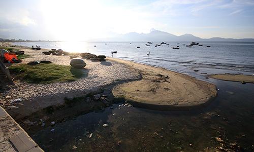 Đà Nẵng xem xét đề xuất mở rộng bãi biển Nguyễn Tất Thành
