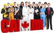 Chọn ngành du học 'đón sóng' tuyển dụng ở Canada