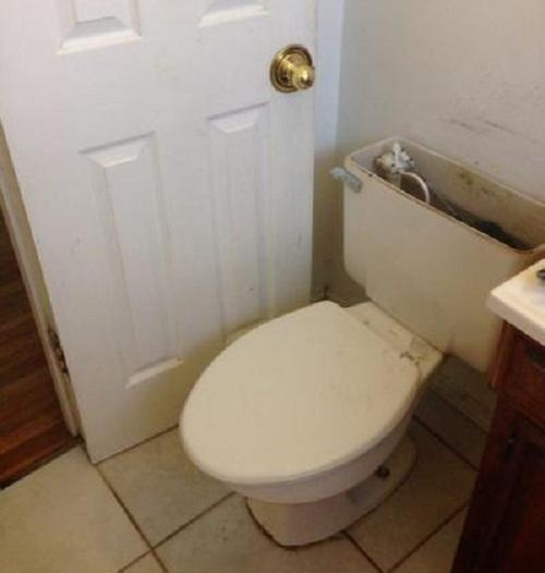 Cần trao giải Nobel cho người thiết kế nhà vệ sinh này.