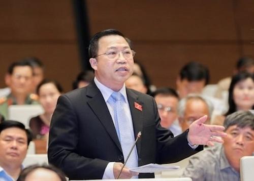 Đại biểu Lưu Bình Nhưỡng cho rằng mức thuế 45% mà cơ quan thanh tra đưa ra là chưa rõcăn cứ. Ảnh: Q.H