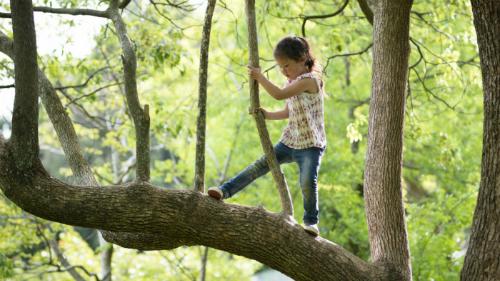 Phụ huynh nên giám sát nhưng không cản trở trẻ khám phá giới hạn của bản thân. Ảnh: Scary Mommy