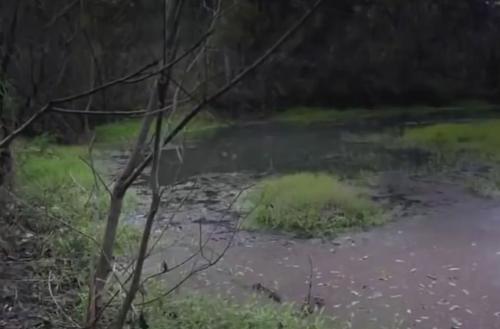 Khu vực phát hiện thi thể nạn nhân.