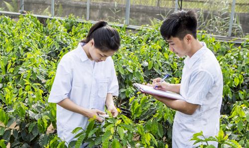 Học viện Nông nghiệp Việt Nam tuyển sinh gần 6.000 chỉ tiêu năm 2018. Ảnh sinh viên ngành Nông nghiệp học tập ở trường.