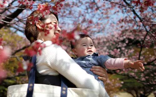 Một cuộc khảo sát năm 2015 của chính phủ cho thấy cứ một trong 5 phụ nữ Nhật sau khi nghỉ thai sản sẽ mất việc. Ảnh: Reuters.