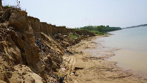 Nạn hút cát trái phép khiến bờ đê sông Chu ở xã Thiệu Đô bị sạt lở sâu, ngoạm nhiều đồng ruộng. Ảnh: Lê Hoàng.