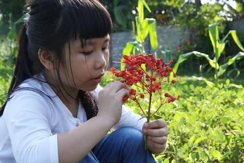 Bé Nguyễn Phan Anh Thư thích làm văn và tập võ. Ảnh: NVCC