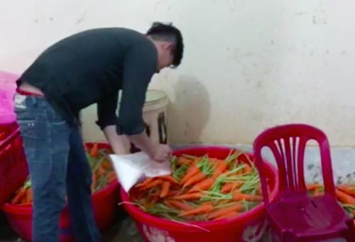 Nhân viên đổ chất tẩy trắng vào thau cà rốt. Ảnh: Tin Tin